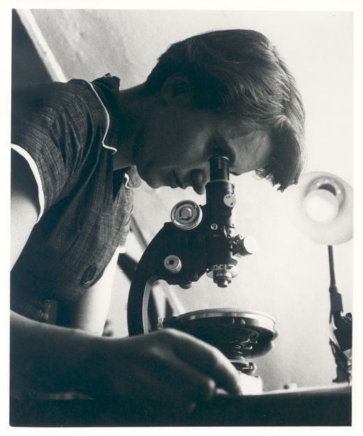 Rosalind Franklin looking into a microscope