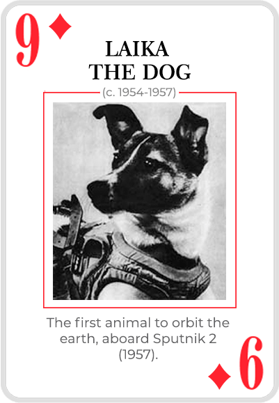 Laika the dog on a card